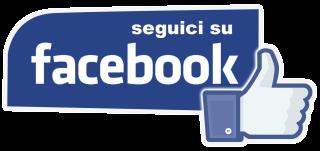 facebook_mi_piace